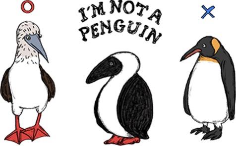 チャムスのキャラクターはペンギンではない